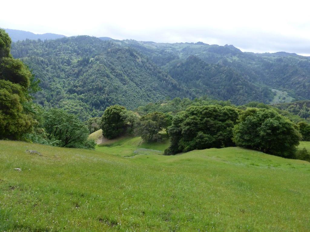 157 Acres Island Mountain